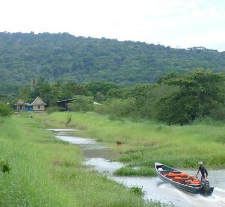 Les Filles s'emmêlent aux Marais de Kaw | Un peu d'Histoire