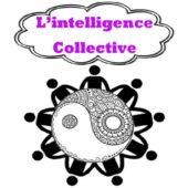 Au Delà des Péka ::: L'intelligence collective