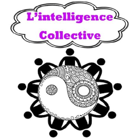 Au Delà des Péka ::: L'intelligence collective